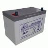 Leoch 65AMP Battery